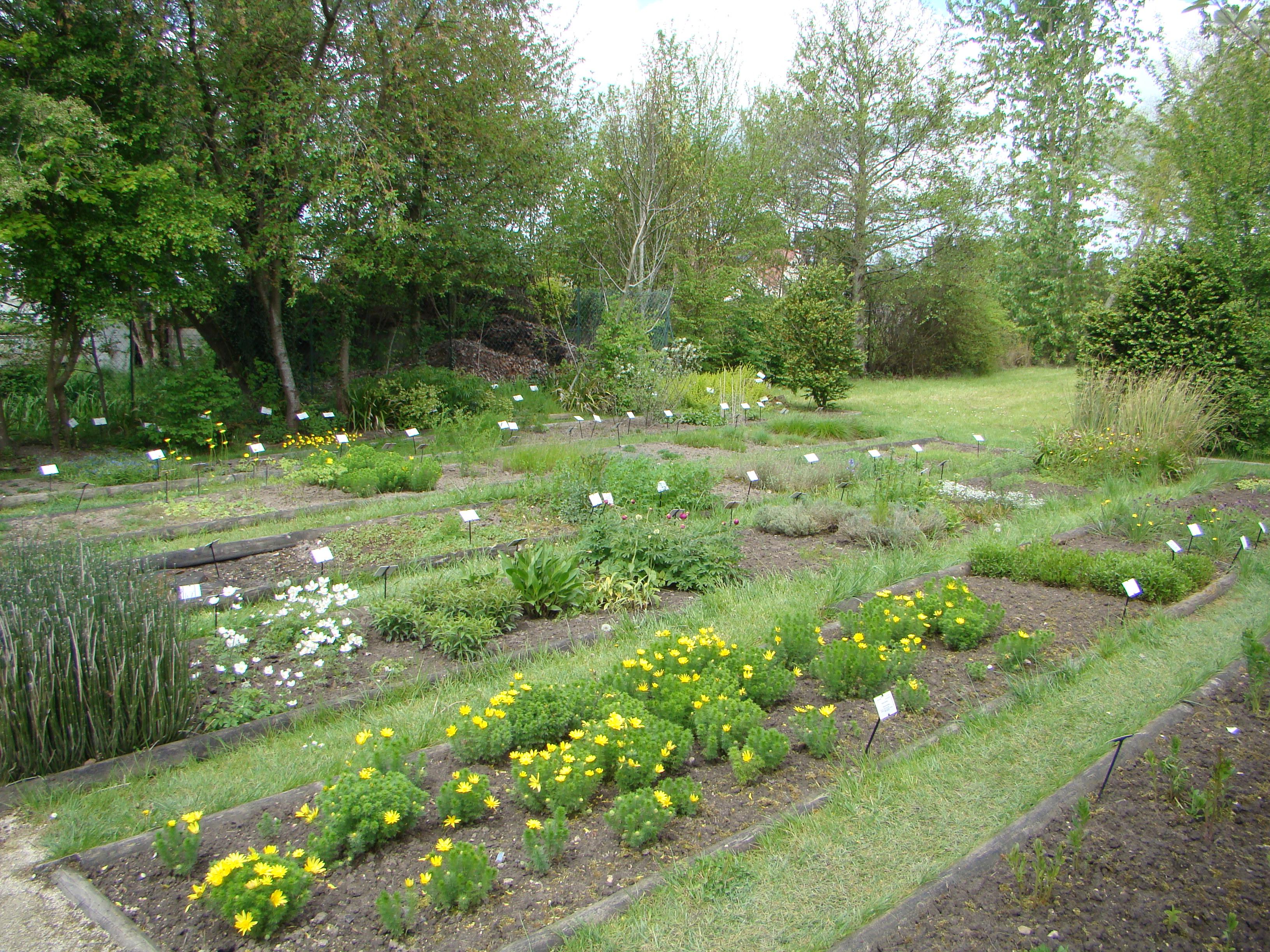 Les jardins conservatoire national des plantes for Jardin les plantes