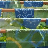 Atelier plantes tinctoriales