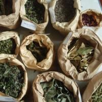 Atelier plantes a parfum