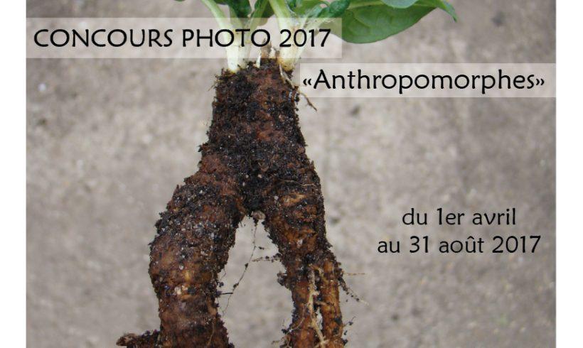 Concours photo 2017