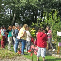 2014-09-28 atelier plantes a fibres