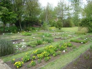 Le jardin des plantes protégées