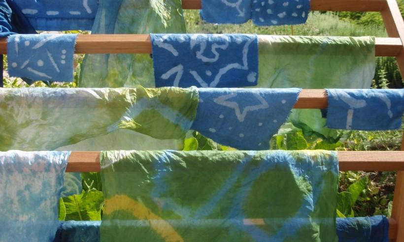 """Ateliers adultes """"Plantes tinctoriales"""" – 25 et 28 juillet"""