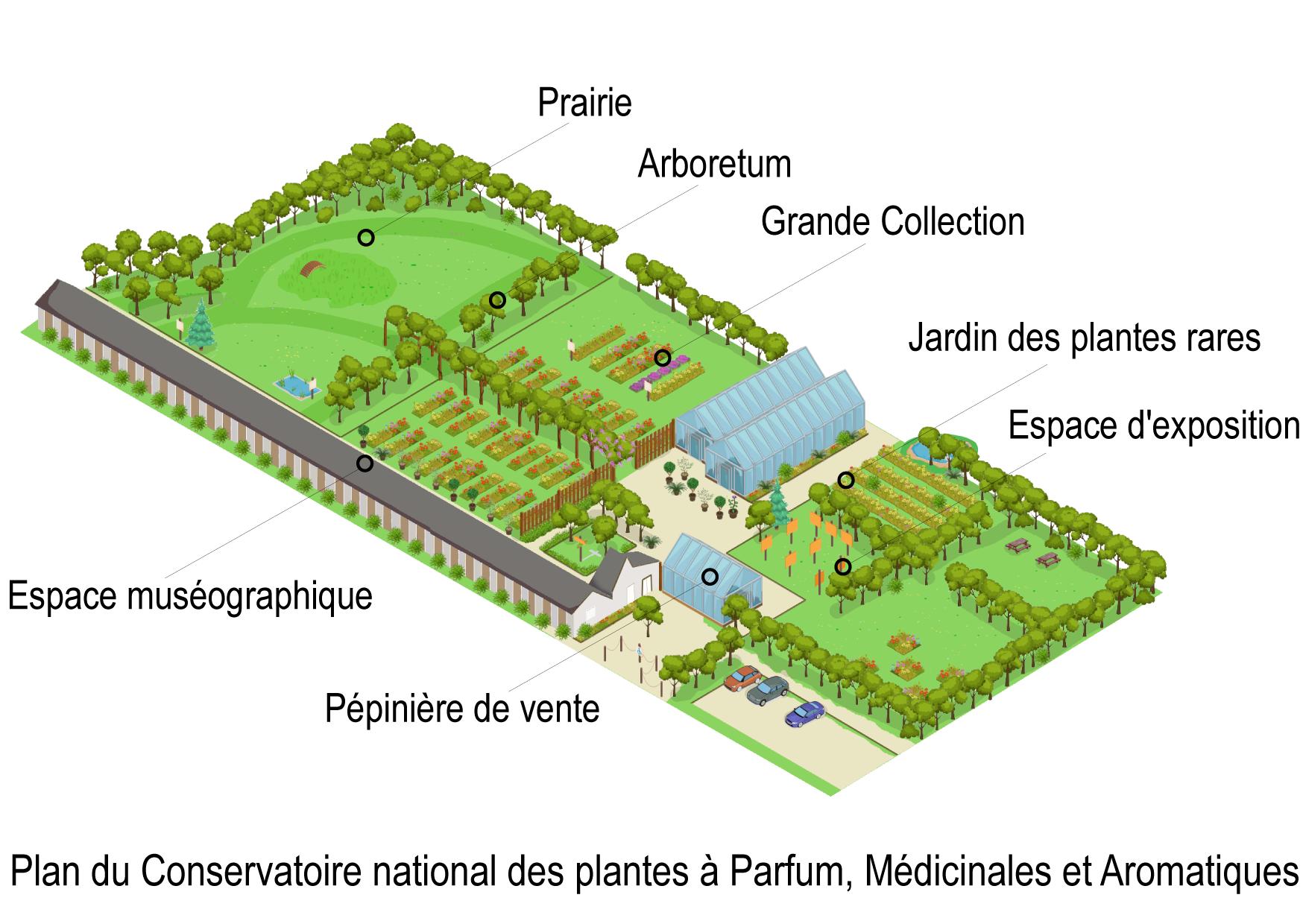 Plan du CNPMAI