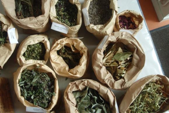 Mission d'information sur l'herboristerie au Sénat