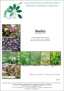premiere page publication basilic