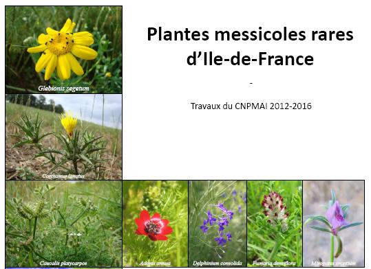 Une nouvelle publication du CNPMAI sur… la situation des plantes messicoles menacées en Ile-de-France !