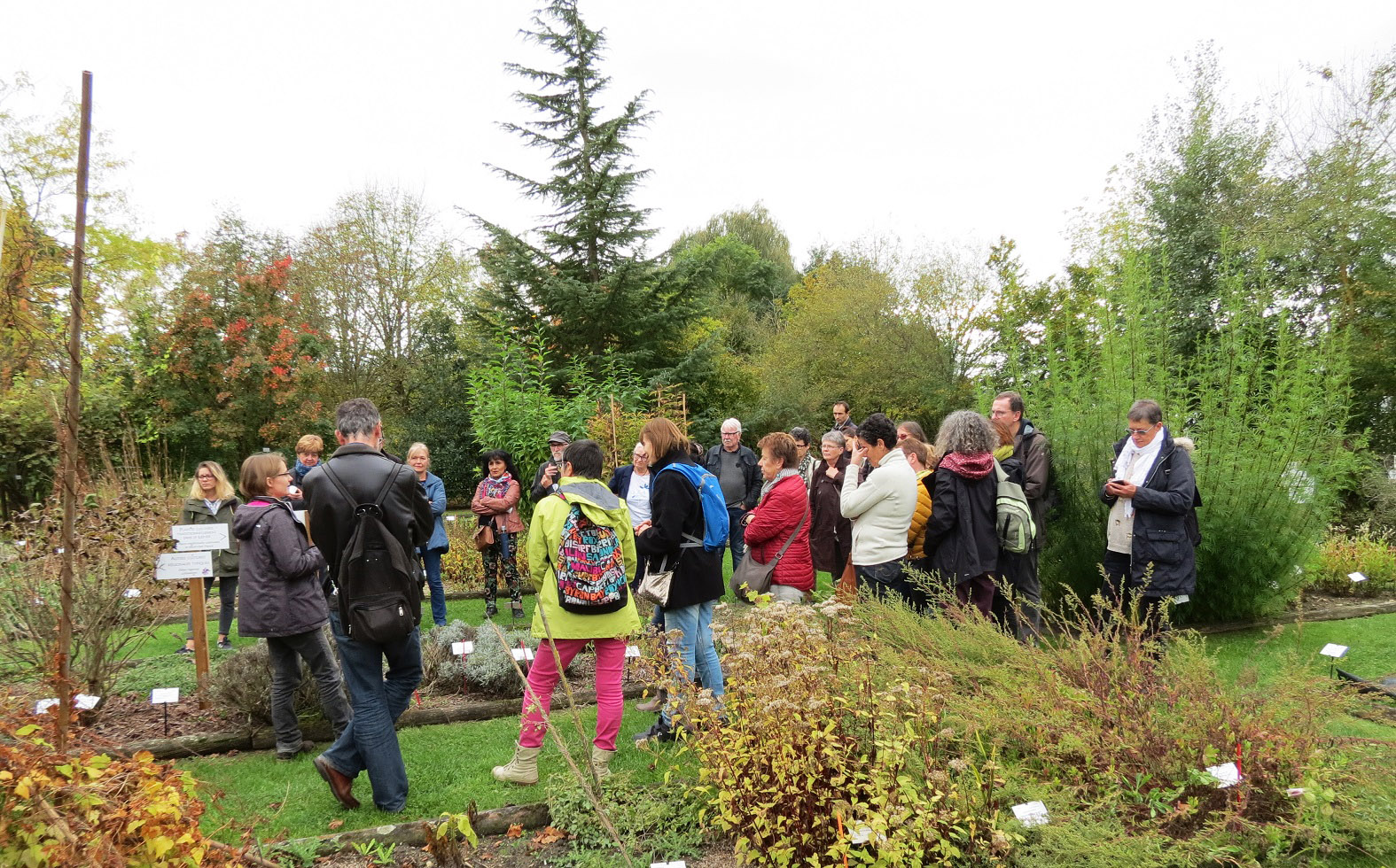 Visite guidee des jardins