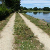 Chemin sur la digue d'un étang à La Peyratte (79)
