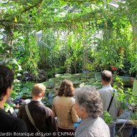 Jardin Botanique de Lyon - Serre Victoria