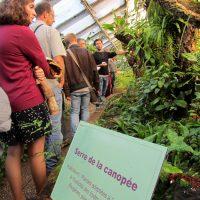Jardin Botanique de Lyon - Serre de la canopée