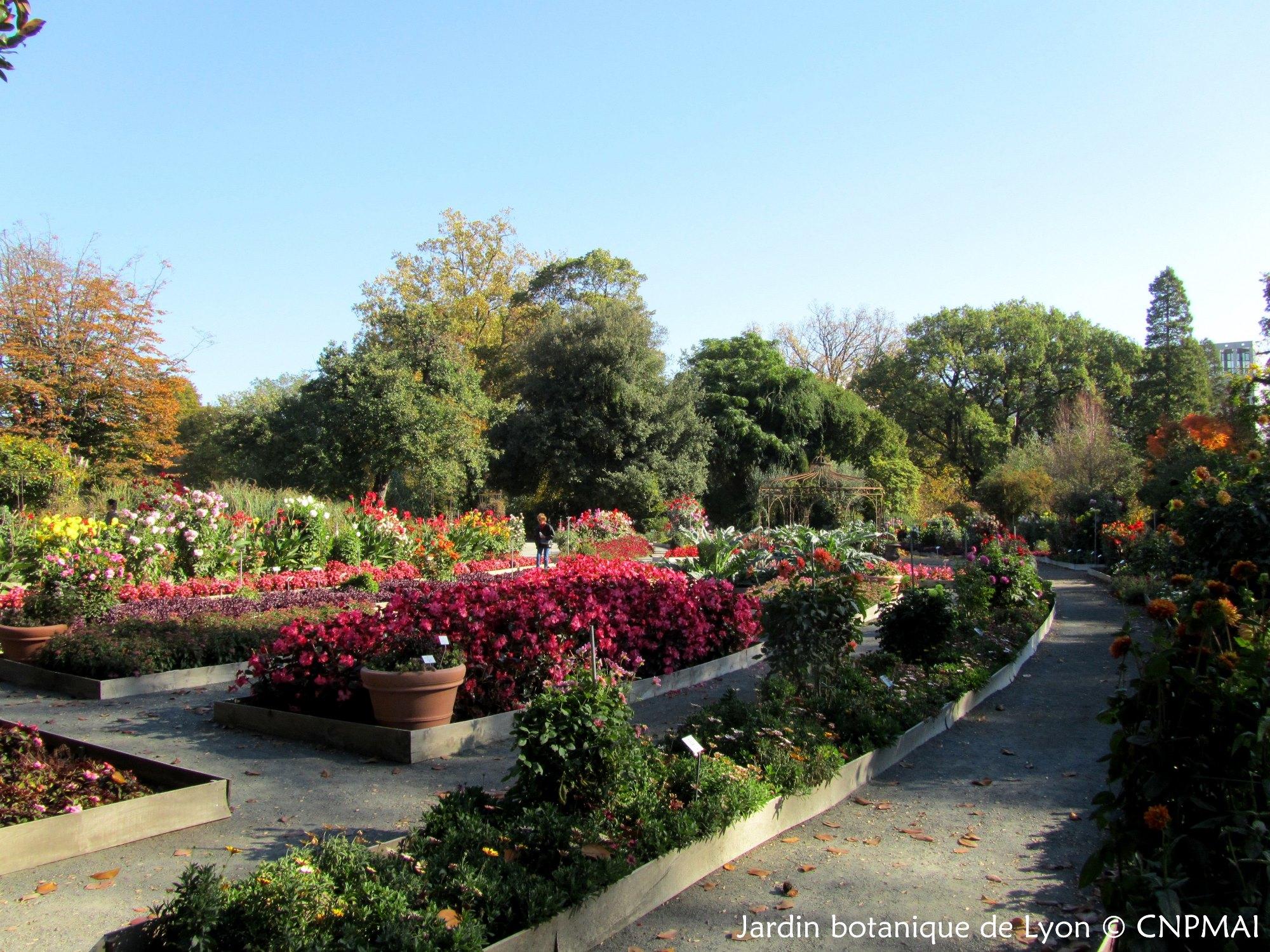 Assembl e g n rale du conservatoire au jardin botanique de - Jardin botanique de lyon ...