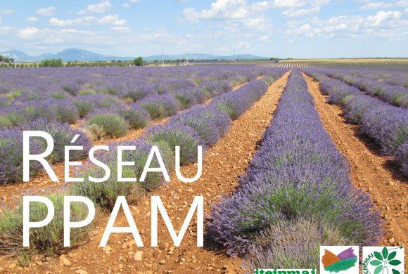 (Français) Les Commissions InterProfessionnelles du Réseau PPAM