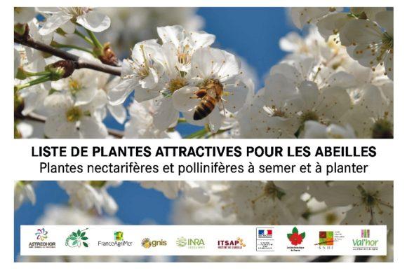 (Français) Publication – Liste de plantes attractives pour les abeilles