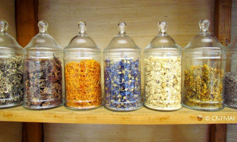 Colloque « Les métiers de l'herboristerie » le 24 mai à Paris