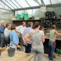 Stage produire ses plants et graines fin août (7)