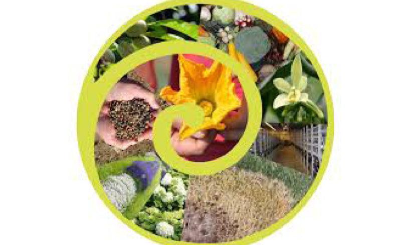 1ere journée des acteurs des ressources phytogénétiques des espèces cultivées et apparentées sauvages