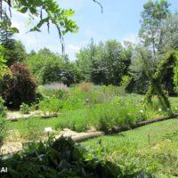 Jardin confiné