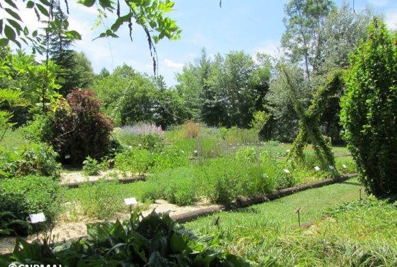 (Français) Les jardins du CNPMAI : les évolutions pour 2019