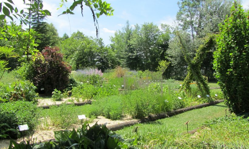 Les jardins du CNPMAI : les évolutions pour 2019