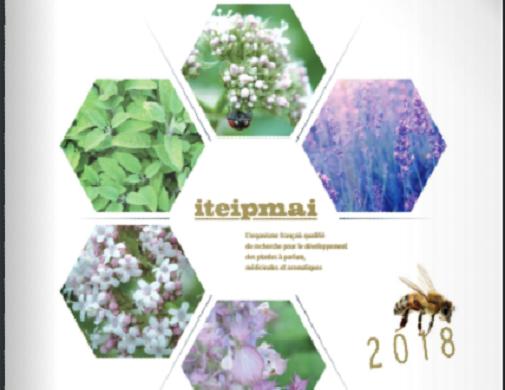 (Français) L'iteipmai publie son rapport d'activités annuel