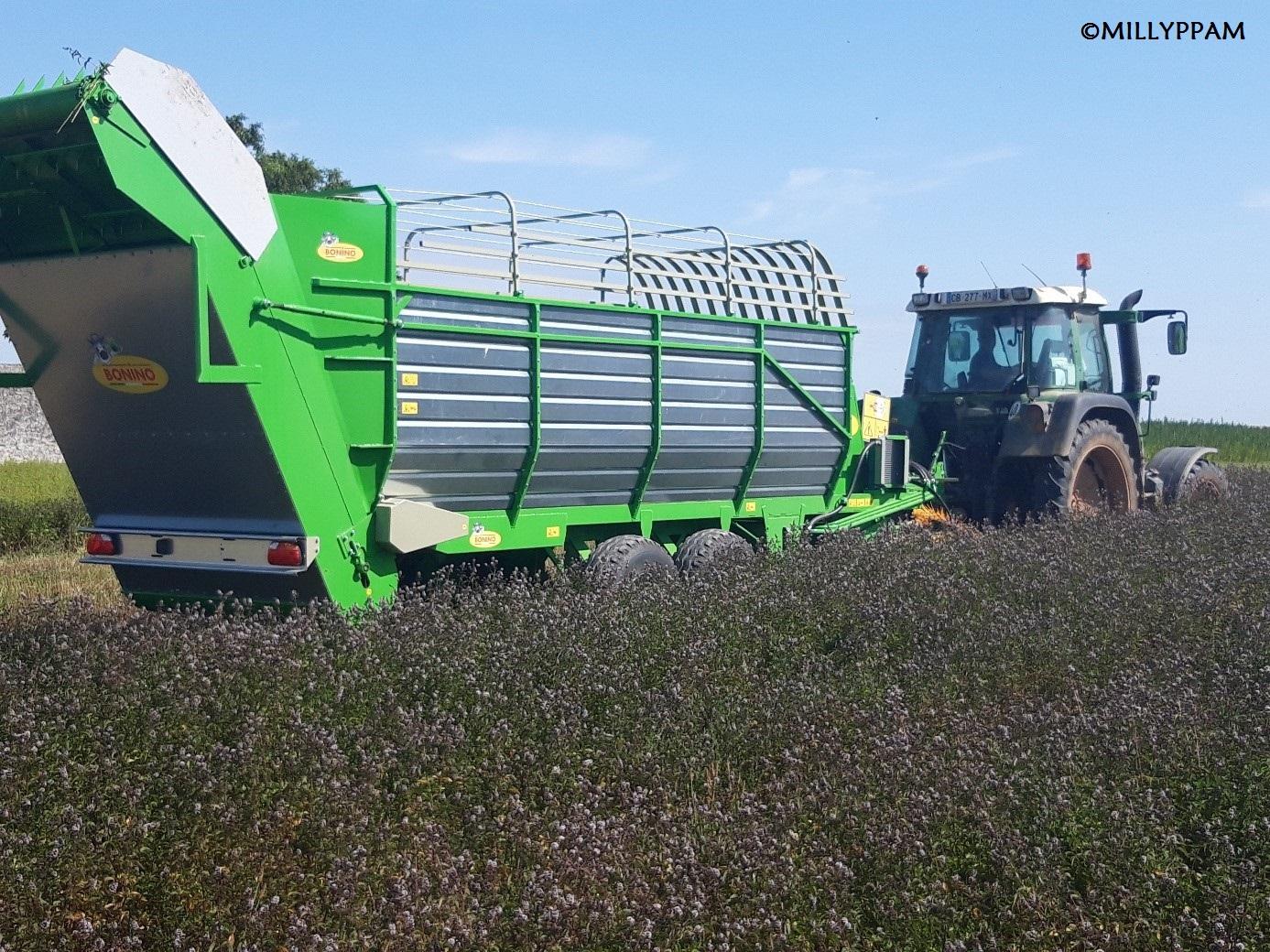 Milly-PPAM - Récolte à l'aide d'une récolteuse « Bonino », 2019.