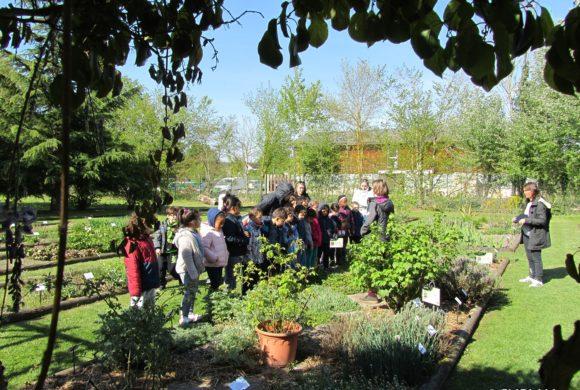 (Français) Offre de stage – Education à l'environnement