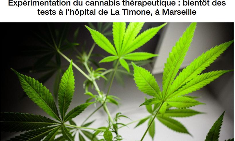 Expérimentation du Cannabis thérapeutique