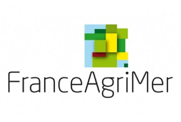 (Français) FranceAgriMer lance un appel à projet « Structuration des filières agricoles et agroalimentaires »
