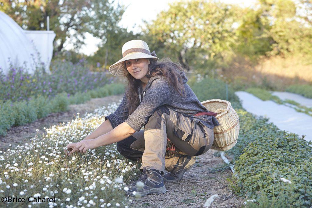 Aline Aurias et sa camomille, photographe © B. Caharel