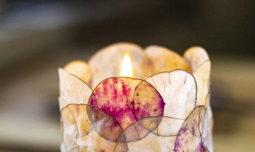 Brindille, écorce, graine… comment créer des objets d'art grâce aux plantes ?