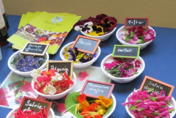 (Français) Une filière de fleurs comestibles en construction