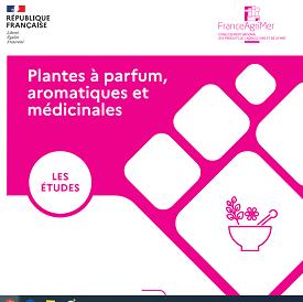 (Français) Prospective filière PPAM 2040-2045