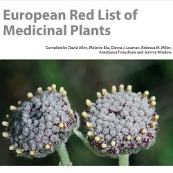 (Français) Des espèces médicinales européennes sont menacées d'extinction