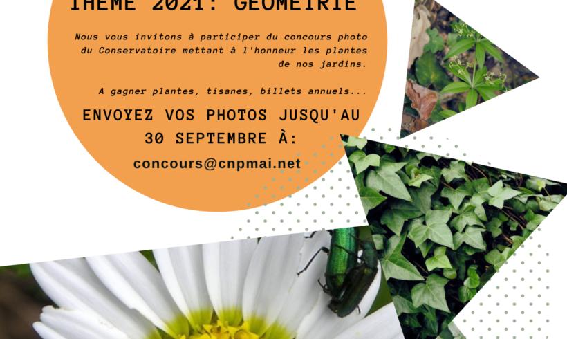 """(Français) Concours photo thème """"Géométrie"""""""