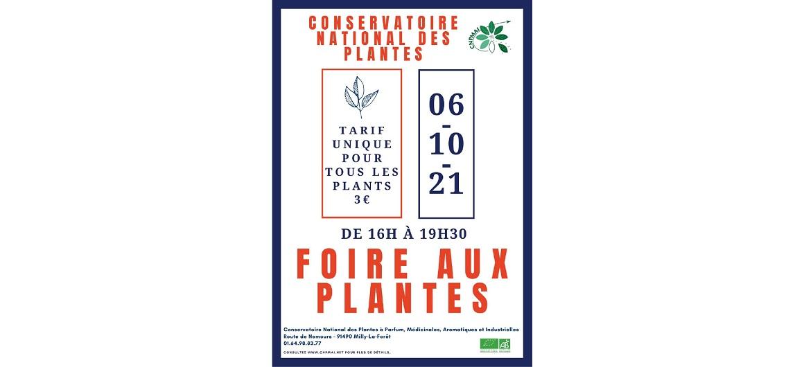 foire aux plantes